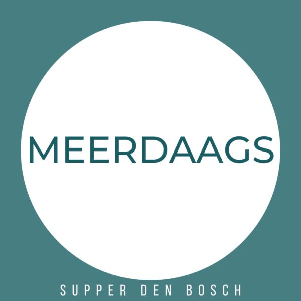 Stand Up Paddle Den Bosch - Meerdaags - product thumbnail